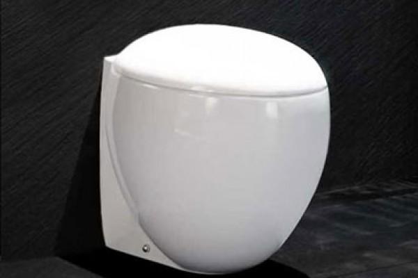 Capac vas WC - EGG